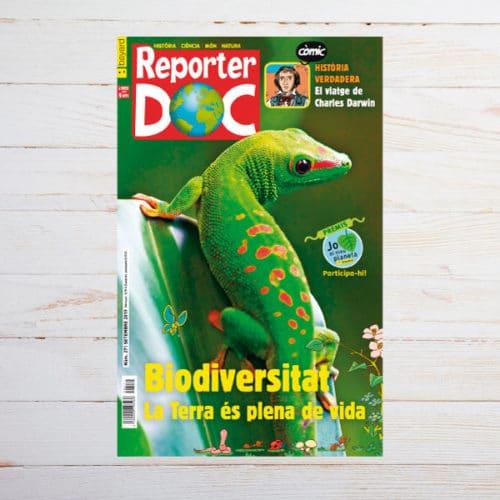 Portada Reporter doc