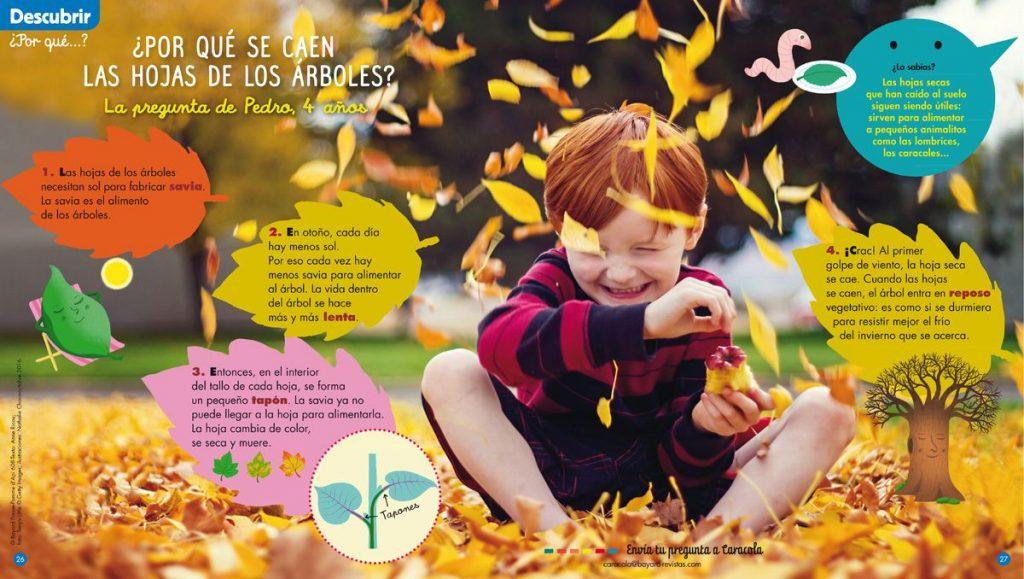 ¿Por qué se caen las hojas de los árboles? - revista Caracola
